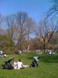 10 Central Park